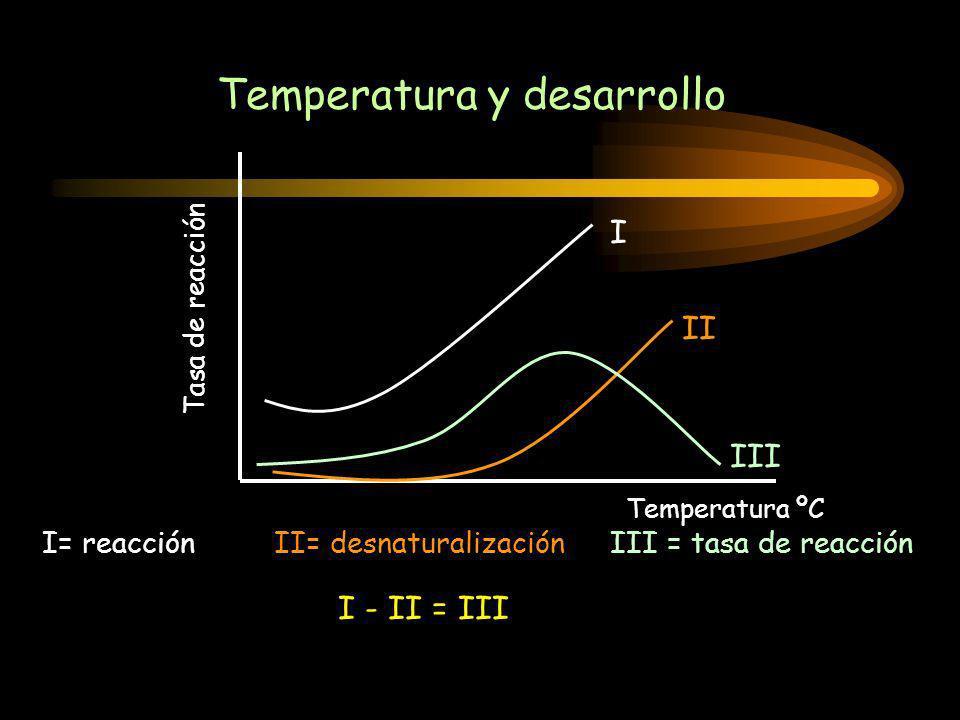 Temperatura y desarrollo I II III I= reacciónII= desnaturalizaciónIII = tasa de reacción I - II = III Tasa de reacción Temperatura ºC