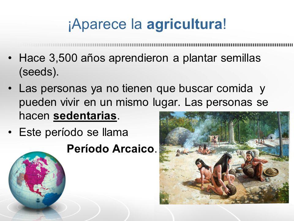 ¡Aparece la agricultura! Hace 3,500 años aprendieron a plantar semillas (seeds). Las personas ya no tienen que buscar comida y pueden vivir en un mism