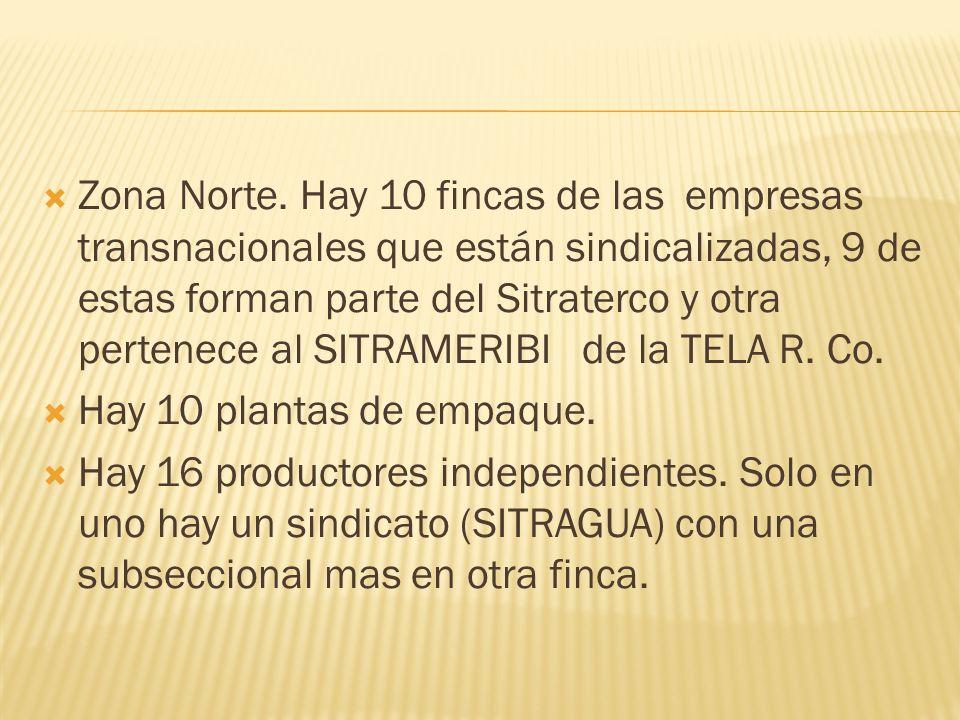 Zona Norte. Hay 10 fincas de las empresas transnacionales que están sindicalizadas, 9 de estas forman parte del Sitraterco y otra pertenece al SITRAME