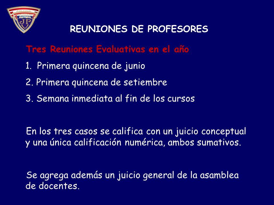 REUNIONES DE PROFESORES Tres Reuniones Evaluativas en el año 1.