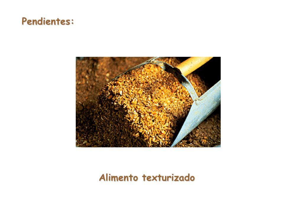 Pendientes: Alimento texturizado