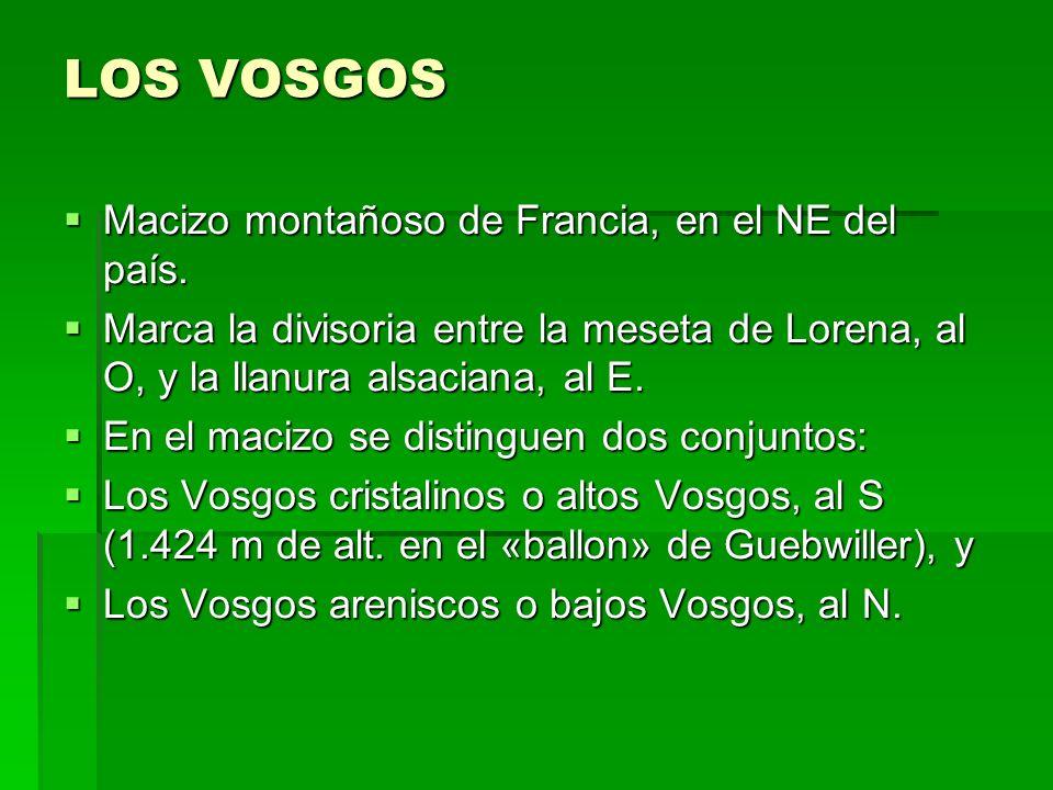 LOS VOSGOS Macizo montañoso de Francia, en el NE del país. Macizo montañoso de Francia, en el NE del país. Marca la divisoria entre la meseta de Loren