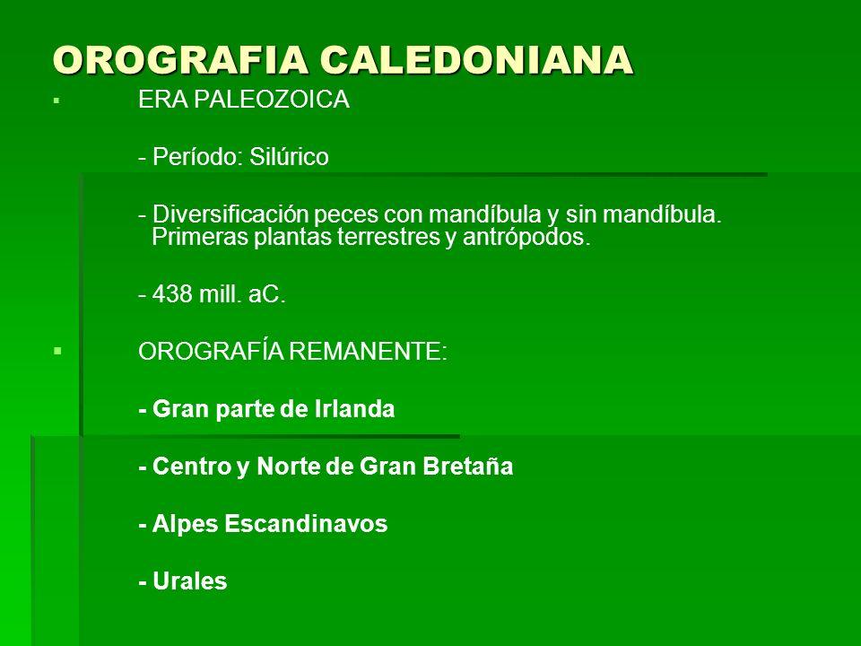 OROGRAFIA CALEDONIANA ERA PALEOZOICA - Período: Silúrico - Diversificación peces con mandíbula y sin mandíbula. Primeras plantas terrestres y antrópod