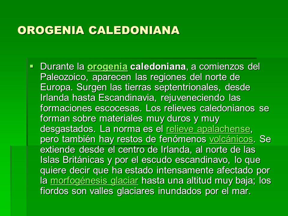 OROGENIA CALEDONIANA Durante la orogenia caledoniana, a comienzos del Paleozoico, aparecen las regiones del norte de Europa. Surgen las tierras septen