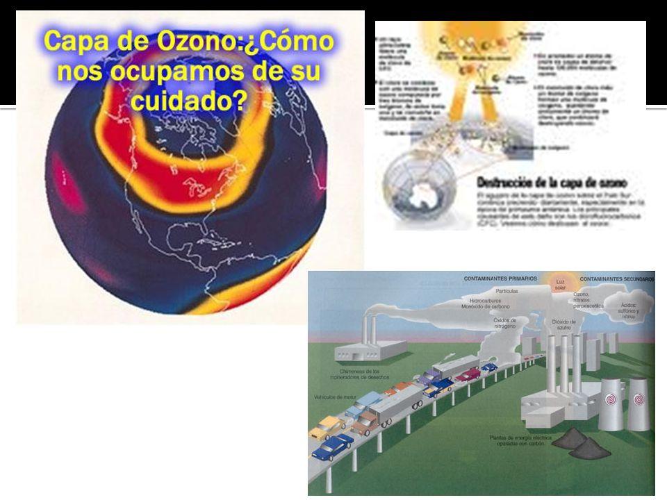 El Fondo Multilateral para la implementación del Protocolo de Montreal es el órgano encargado de brindar los fondos y el financiamiento para asistir a los países en vías de desarrollo a eliminar el uso de sustancias que agotan el ozono.