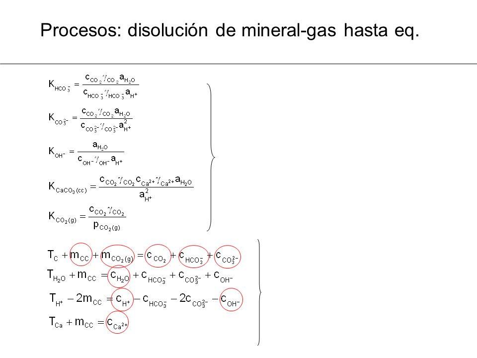 Procesos: disolución de mineral-gas hasta eq.