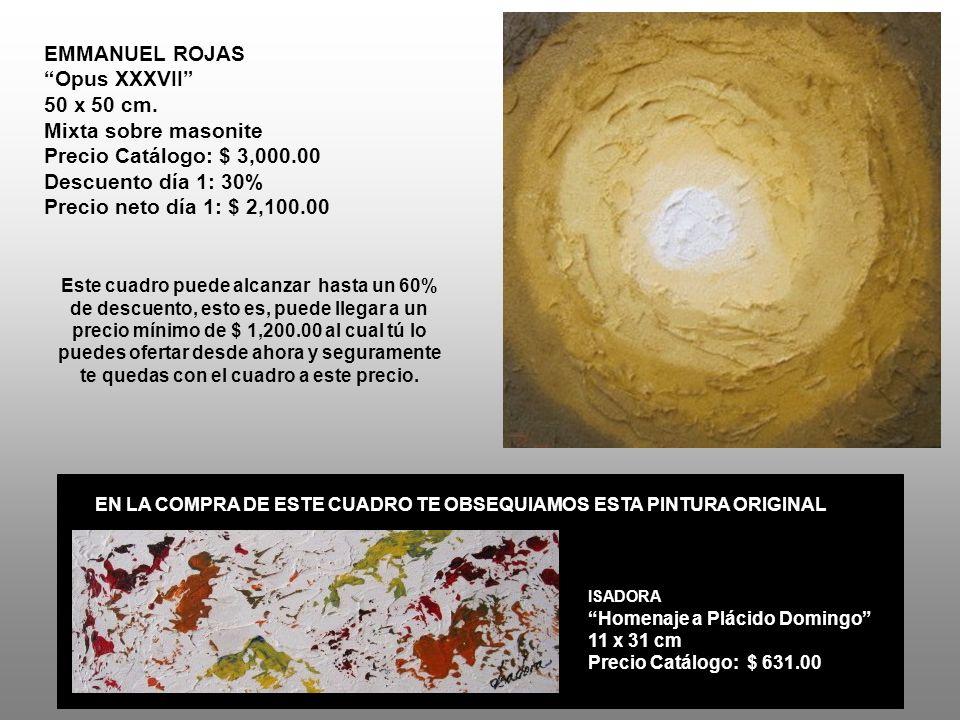 ALBERTO VÁZQUEZ NAVARRETE Los volcanes 40 x 50 cm.