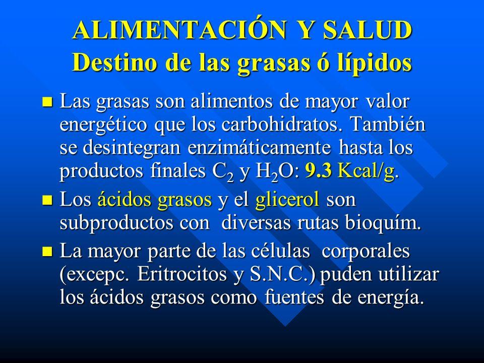 ALIMENTACIÓN Y SALUD Destino de las grasas ó lípidos Las grasas son alimentos de mayor valor energético que los carbohidratos.