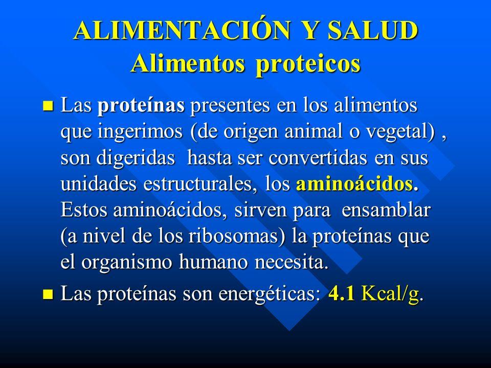 ALIMENTACIÓN Y SALUD Alimentos proteicos Las proteínas presentes en los alimentos que ingerimos (de origen animal o vegetal), son digeridas hasta ser convertidas en sus unidades estructurales, los aminoácidos.