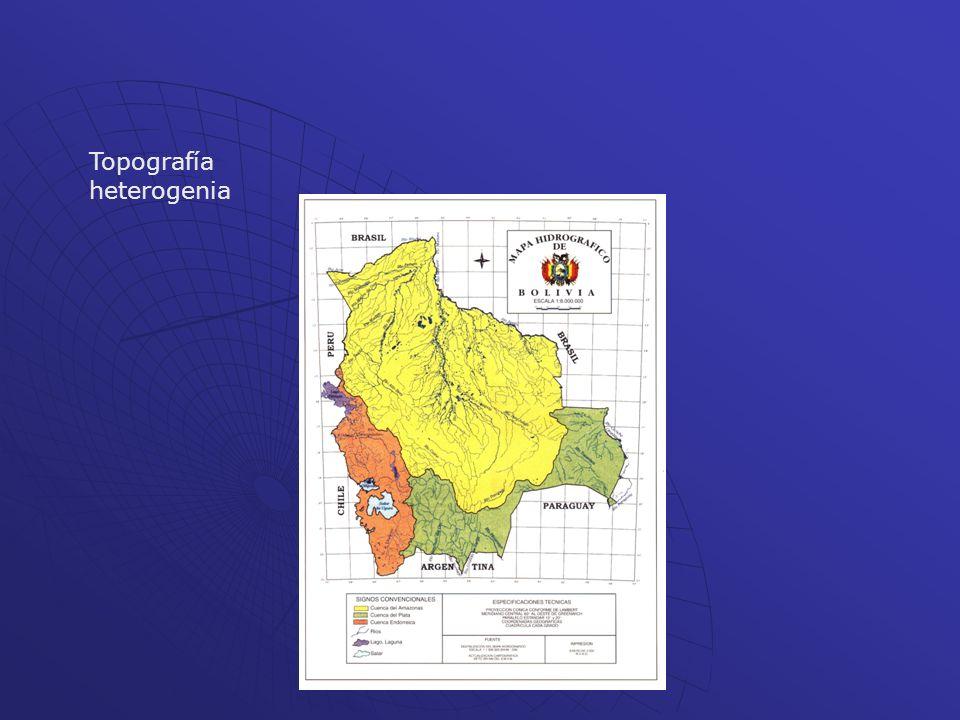 Topografía heterogenia