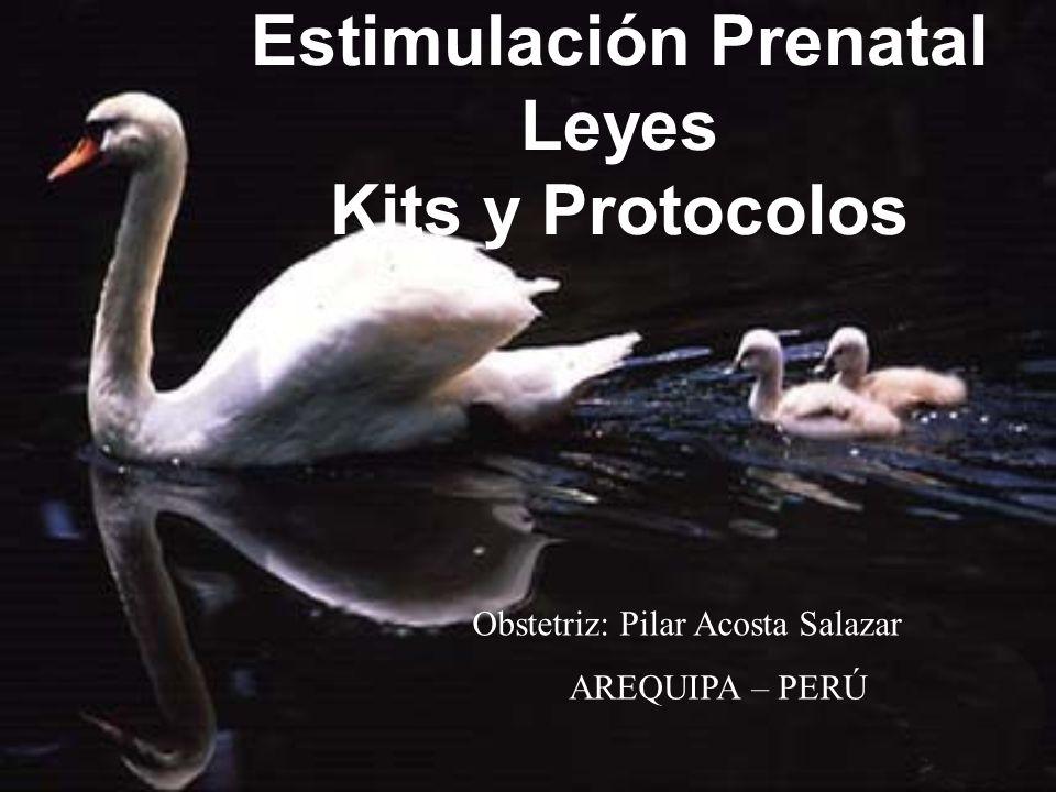 Estimulación Prenatal Leyes Kits y Protocolos Obstetriz: Pilar Acosta Salazar AREQUIPA – PERÚ