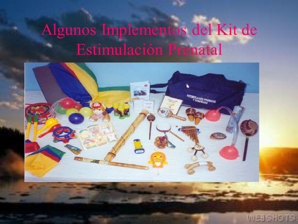 Algunos Implementos del Kit de Estimulación Prenatal