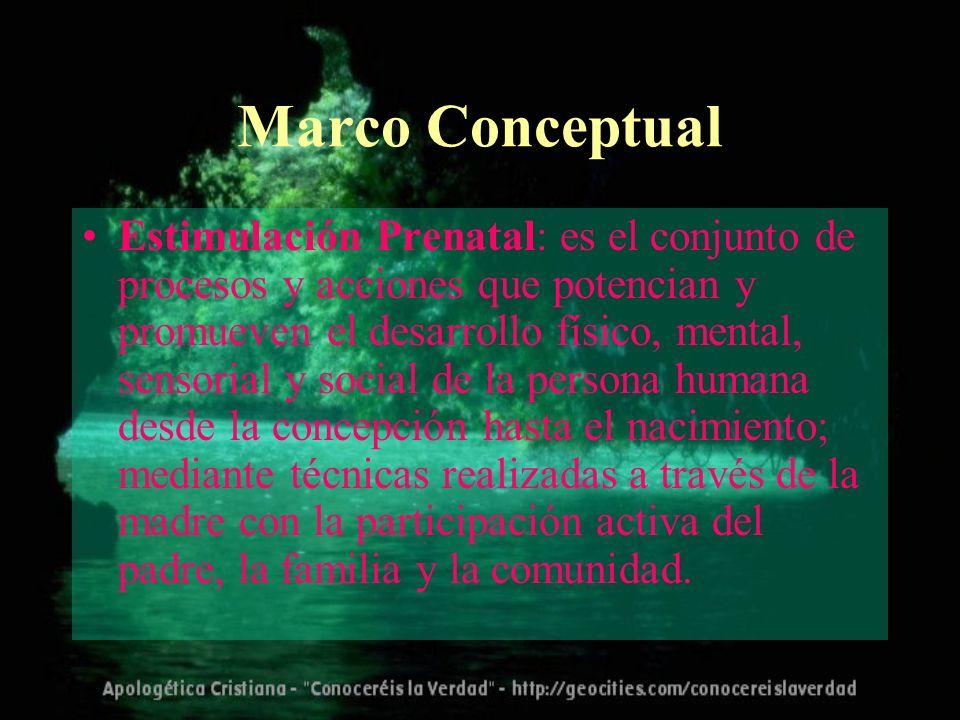 Marco Conceptual Estimulación Prenatal: es el conjunto de procesos y acciones que potencian y promueven el desarrollo físico, mental, sensorial y soci