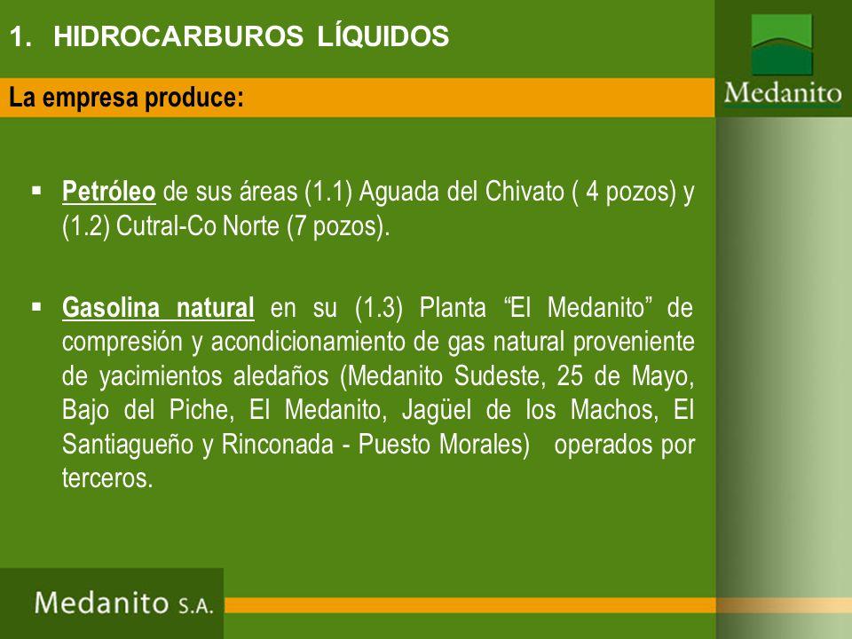 1. HIDROCARBUROS LÍQUIDOS Petróleo de sus áreas (1.1) Aguada del Chivato ( 4 pozos) y (1.2) Cutral-Co Norte (7 pozos). Gasolina natural en su (1.3) Pl