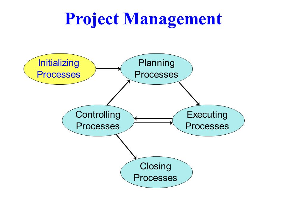 Project Management Initializing Processes Planning Processes Executing Processes Controlling Processes Closing Processes