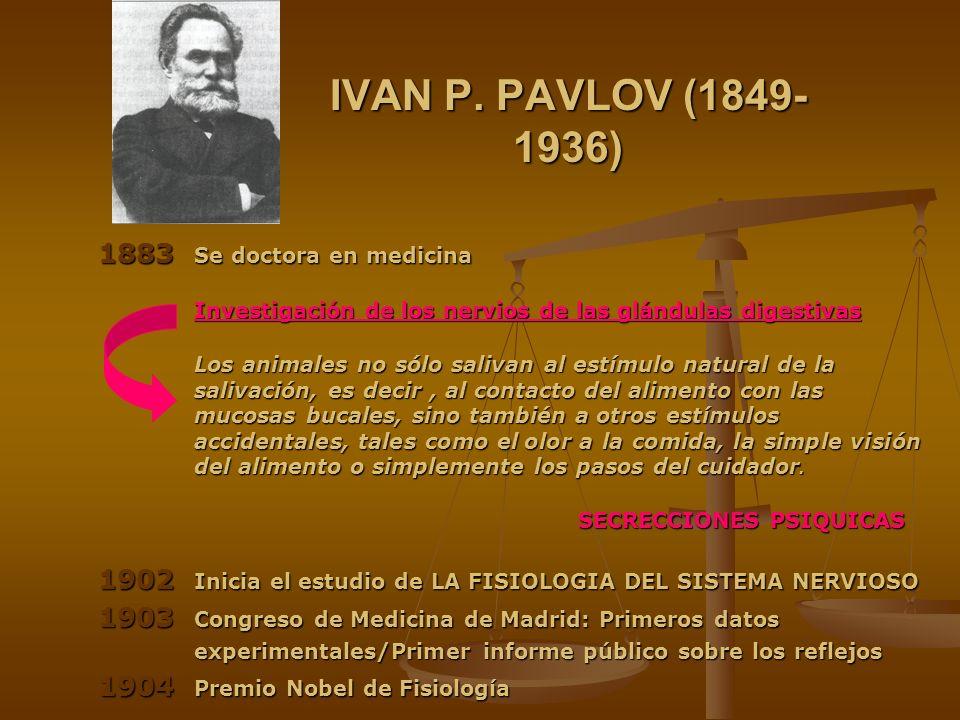 IVAN P. PAVLOV (1849- 1936) 1883 Se doctora en medicina Investigación de los nervios de las glándulas digestivas Los animales no sólo salivan al estím