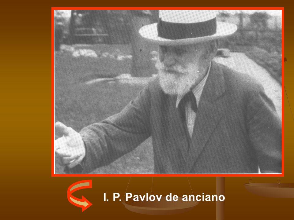 I. P. Pavlov de anciano