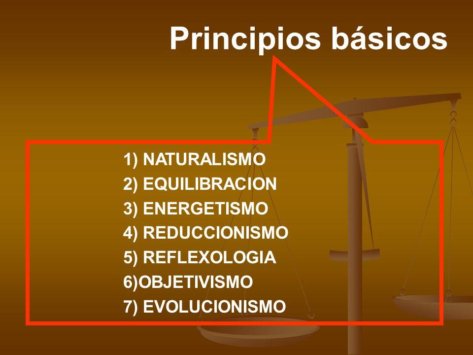 Principios básicos 1) NATURALISMO 2) EQUILIBRACION 3) ENERGETISMO 4) REDUCCIONISMO 5) REFLEXOLOGIA 6)OBJETIVISMO 7) EVOLUCIONISMO