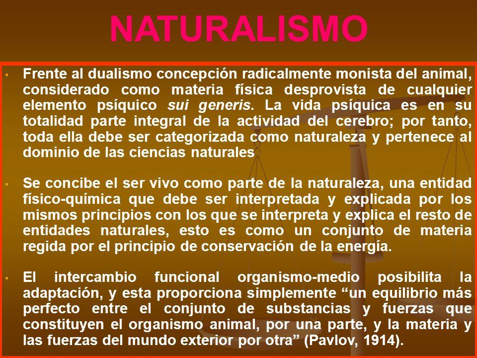 NATURALISMO Frente al dualismo concepción radicalmente monista del animal, considerado como materia física desprovista de cualquier elemento psíquico