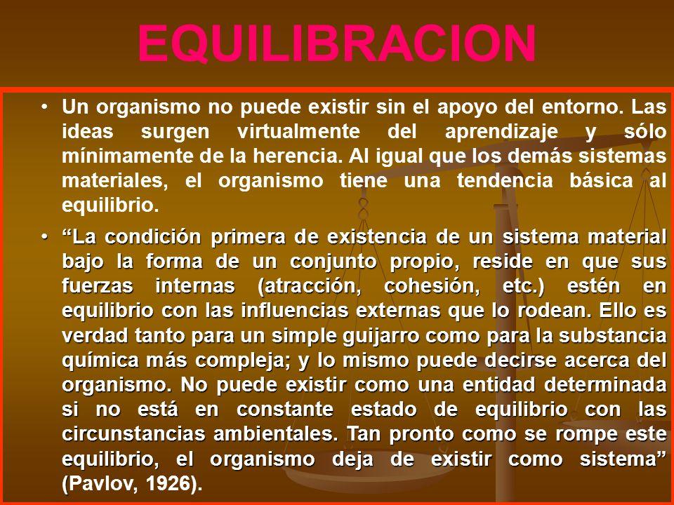EQUILIBRACION Un organismo no puede existir sin el apoyo del entorno. Las ideas surgen virtualmente del aprendizaje y sólo mínimamente de la herencia.