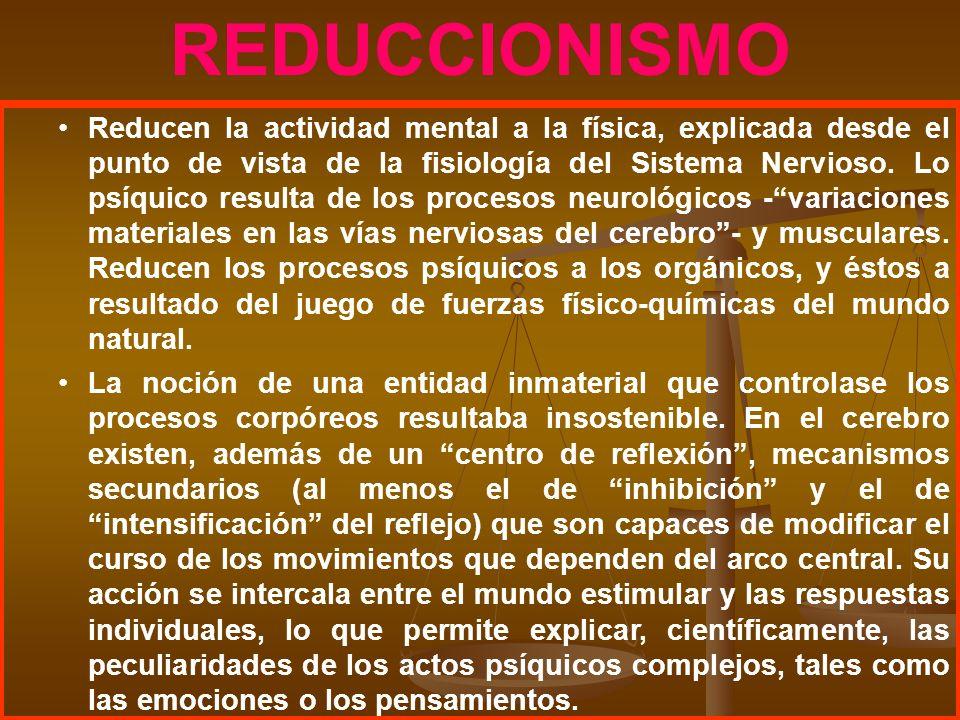 REDUCCIONISMO Reducen la actividad mental a la física, explicada desde el punto de vista de la fisiología del Sistema Nervioso. Lo psíquico resulta de
