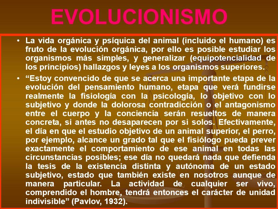 EVOLUCIONISMO equipotencialidadLa vida orgánica y psíquica del animal (incluido el humano) es fruto de la evolución orgánica, por ello es posible estu
