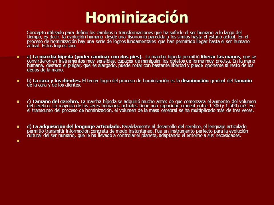 Hominización Concepto utilizado para definir los cambios o transformaciones que ha sufrido el ser humano a lo largo del tiempo, es decir, la evolución humana desde una fisonomía parecida a los simios hasta el estado actual.