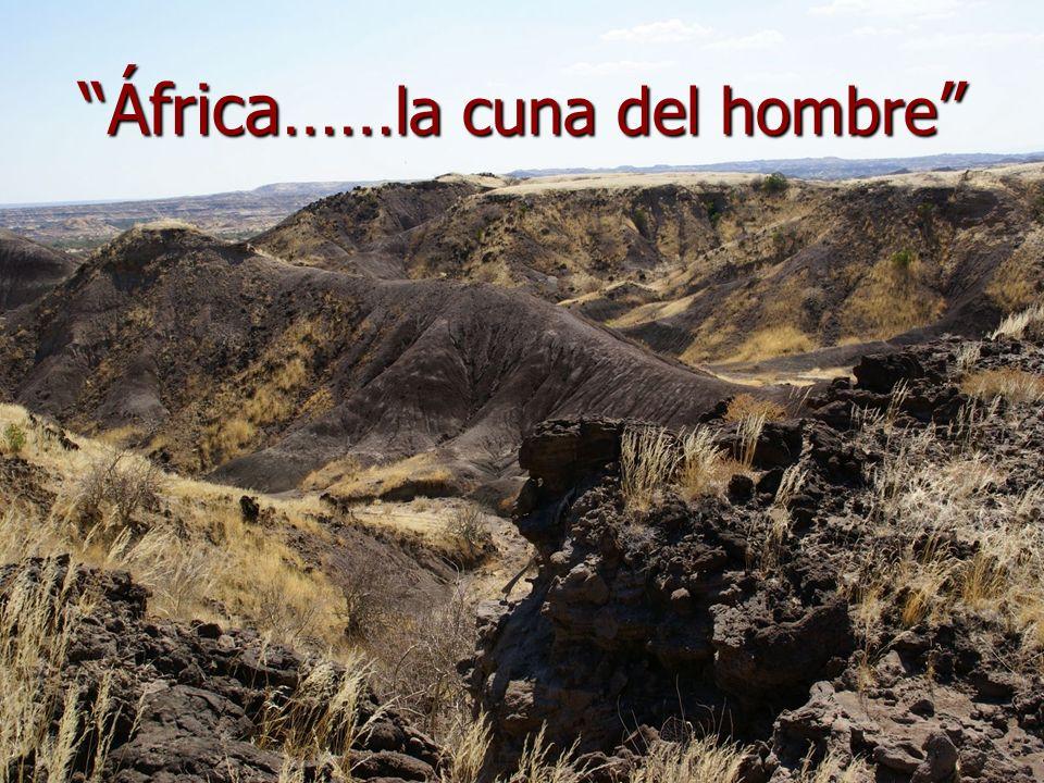 África…… la cuna del hombre África…… la cuna del hombre