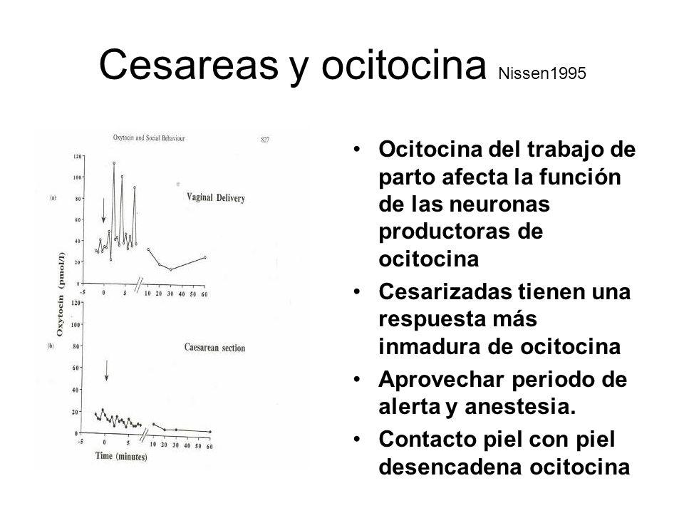 Cesareas y ocitocina Nissen1995 Ocitocina del trabajo de parto afecta la función de las neuronas productoras de ocitocina Cesarizadas tienen una respu