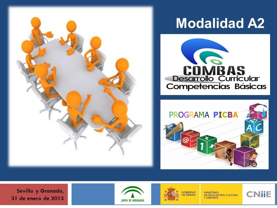 Sevilla y Granada, 31 de enero de 2013 Modalidad A2 PROGRAMA PICBA
