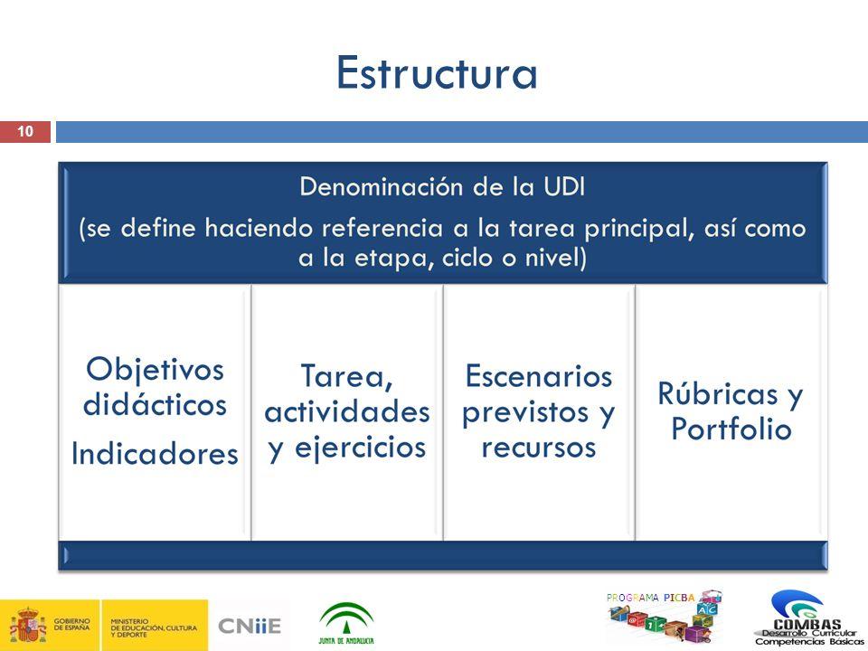 10 PROGRAMA PICBA Estructura