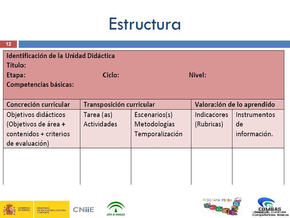 12 Estructura PROGRAMA PICBA