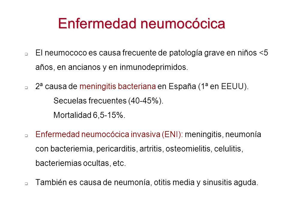 Enfermedad neumocócica El neumococo es causa frecuente de patología grave en niños <5 años, en ancianos y en inmunodeprimidos. 2ª causa de meningitis