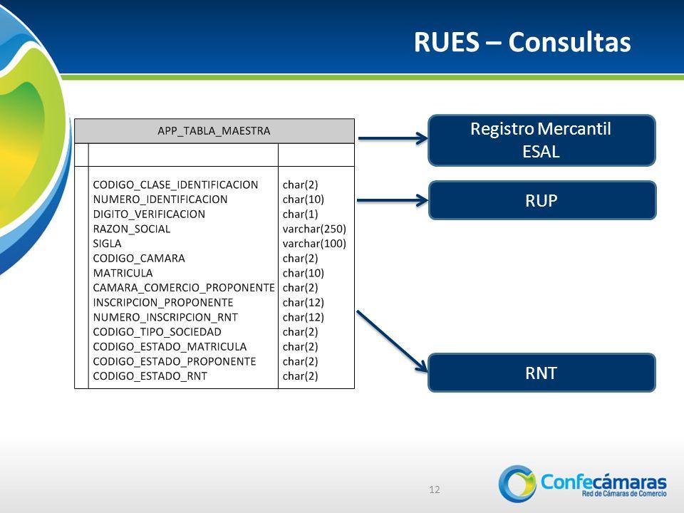 RUES – Consultas 12 Registro Mercantil ESAL RUP RNT