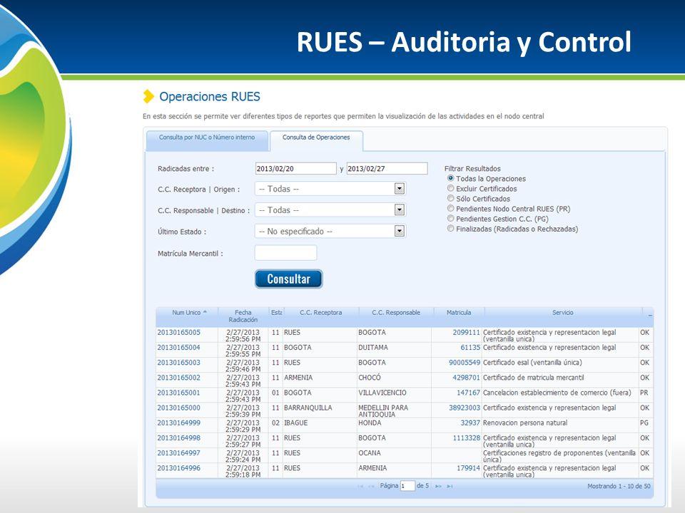 RUES – Auditoria y Control