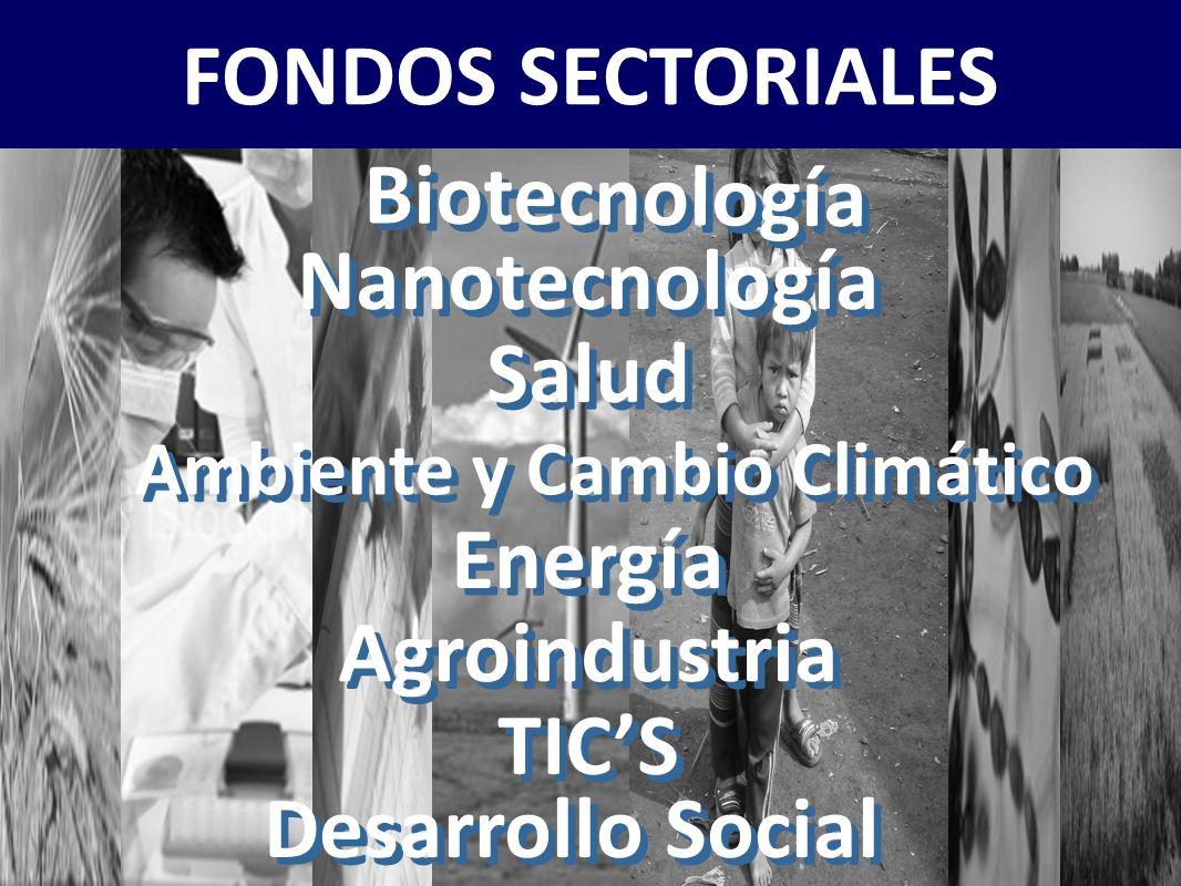 MINCYT – ANPCYT – PRESENTACION FONTAR ACTUALIZADA AL 5/11/2010 FONTAR - FONDO TECNOLOGICO ARGENTINO - FONDOS SECTORIALES Biotecnología Nanotecnología