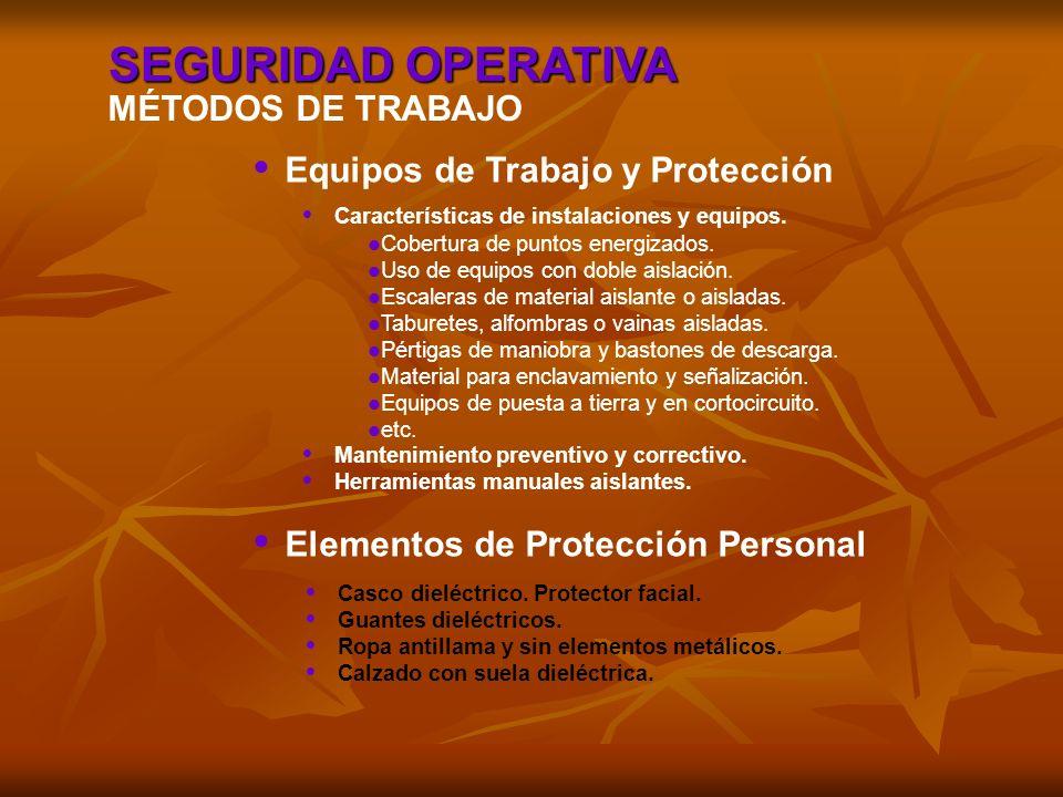 SEGURIDAD OPERATIVA MÉTODOS DE TRABAJO Equipos de Trabajo y Protección Elementos de Protección Personal Características de instalaciones y equipos. Ma
