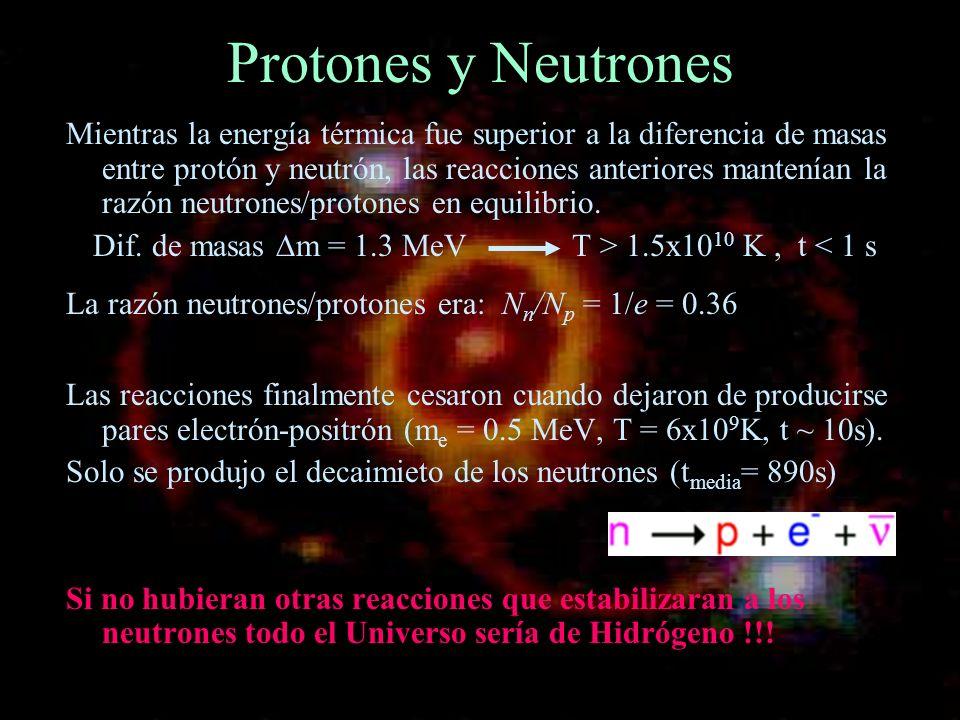 Protones y Neutrones Mientras la energía térmica fue superior a la diferencia de masas entre protón y neutrón, las reacciones anteriores mantenían la