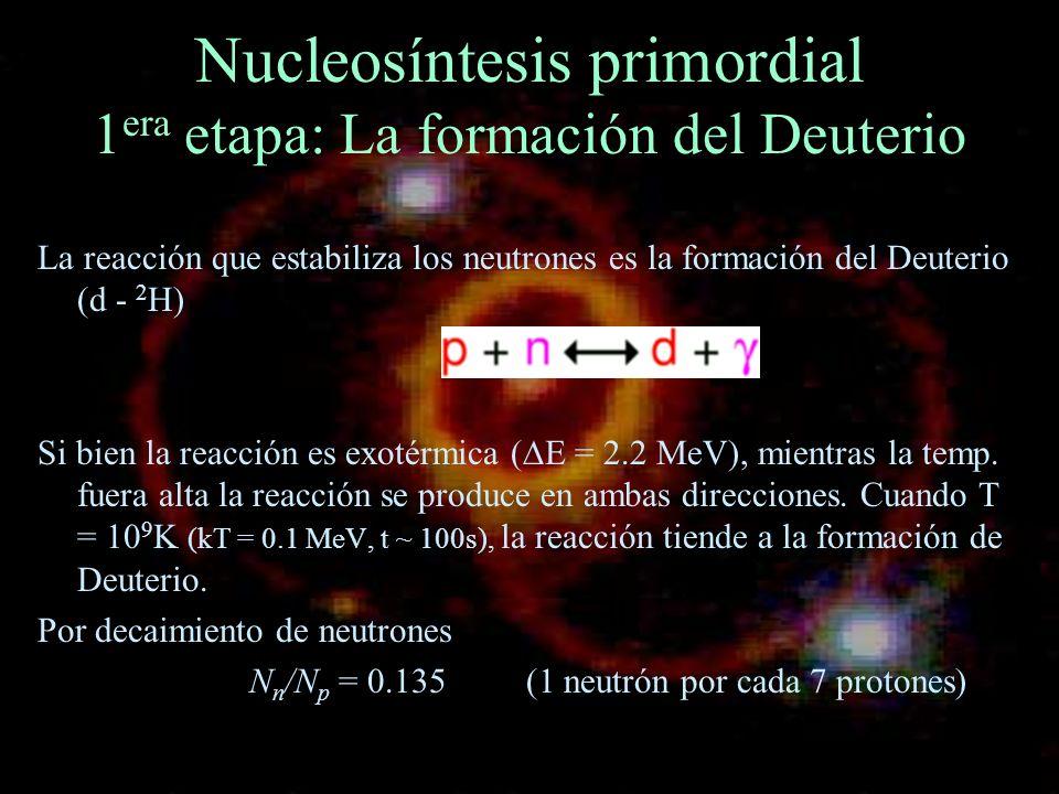 Nucleosíntesis primordial 1 era etapa: La formación del Deuterio La reacción que estabiliza los neutrones es la formación del Deuterio (d - 2 H) Si bi