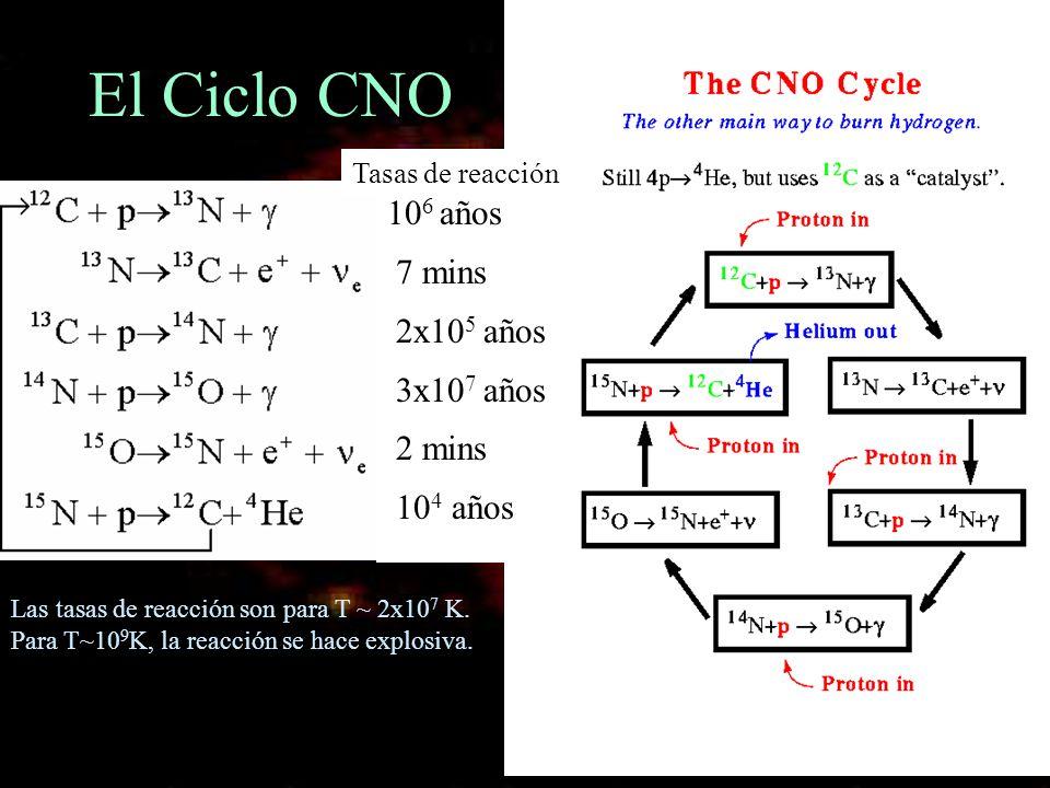 El Ciclo CNO 10 6 años 7 mins 2x10 5 años 3x10 7 años 2 mins 10 4 años Tasas de reacción Las tasas de reacción son para T ~ 2x10 7 K. Para T~10 9 K, l