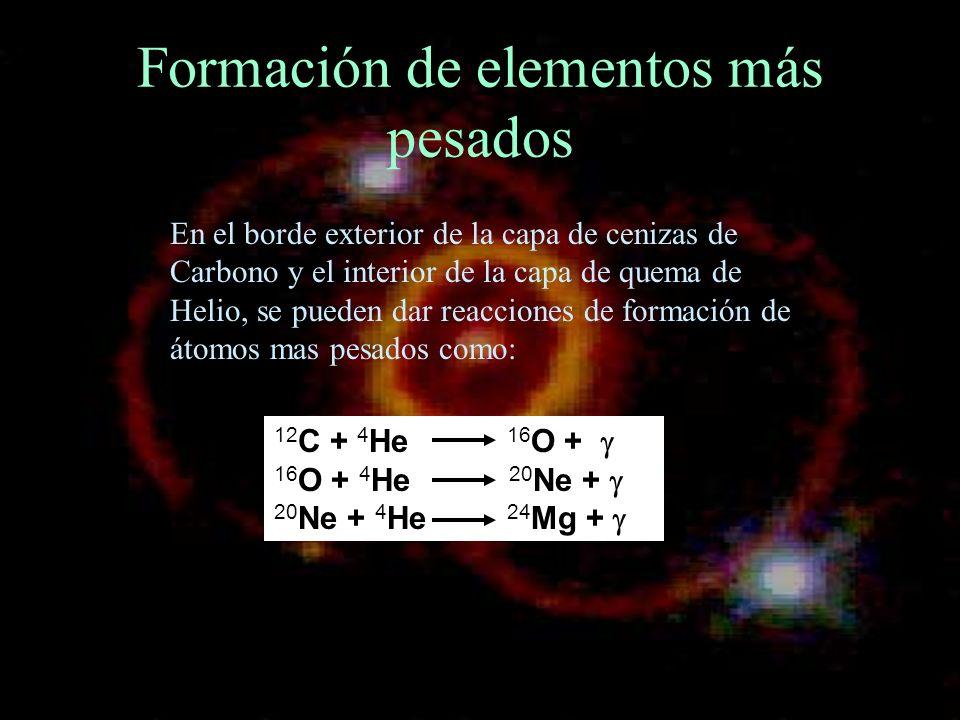 Formación de elementos más pesados 12 C + 4 He 16 O + 16 O + 4 He 20 Ne + 20 Ne + 4 He 24 Mg + En el borde exterior de la capa de cenizas de Carbono y
