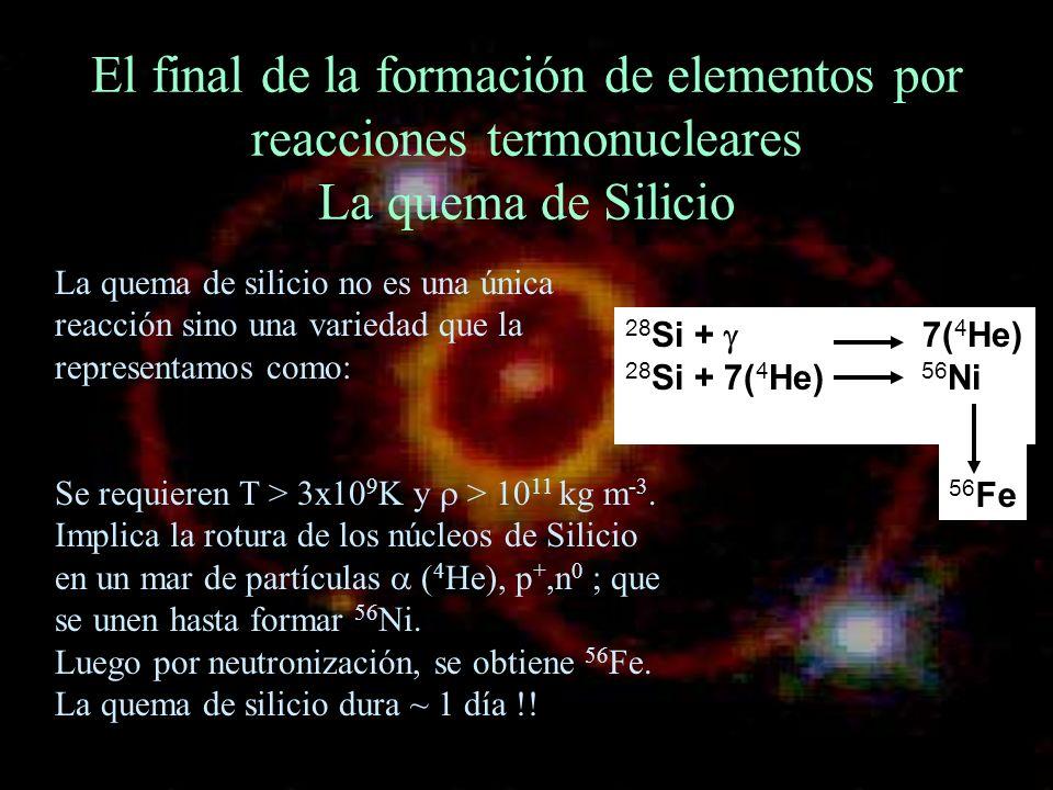 El final de la formación de elementos por reacciones termonucleares La quema de Silicio 28 Si + 7( 4 He) 28 Si + 7( 4 He) 56 Ni La quema de silicio no