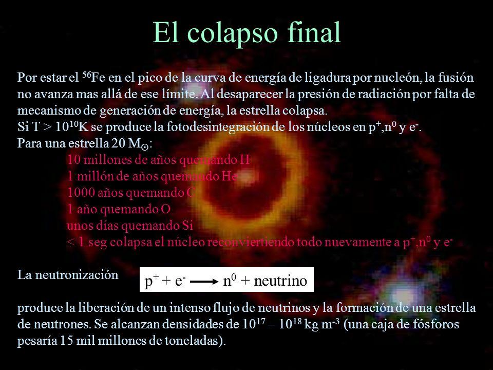 El colapso final Por estar el 56 Fe en el pico de la curva de energía de ligadura por nucleón, la fusión no avanza mas allá de ese límite. Al desapare