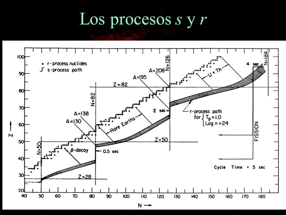 Los procesos s y r
