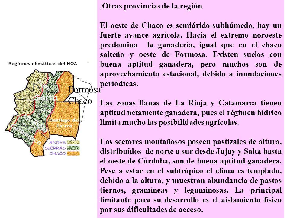 . Otras provincias de la región El oeste de Chaco es semiárido-subhúmedo, hay un fuerte avance agrícola. Hacia el extremo noroeste predomina la ganade