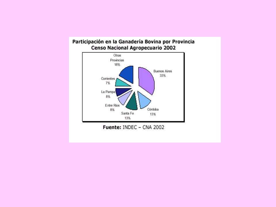 DISTRIBUCION GEOGRAFICA DE LA PRODUCCION GANADERA TASA DE EXTRACCION 23/25 % 31% 25% 19% 16% 10% Fuente: sagpya 2004