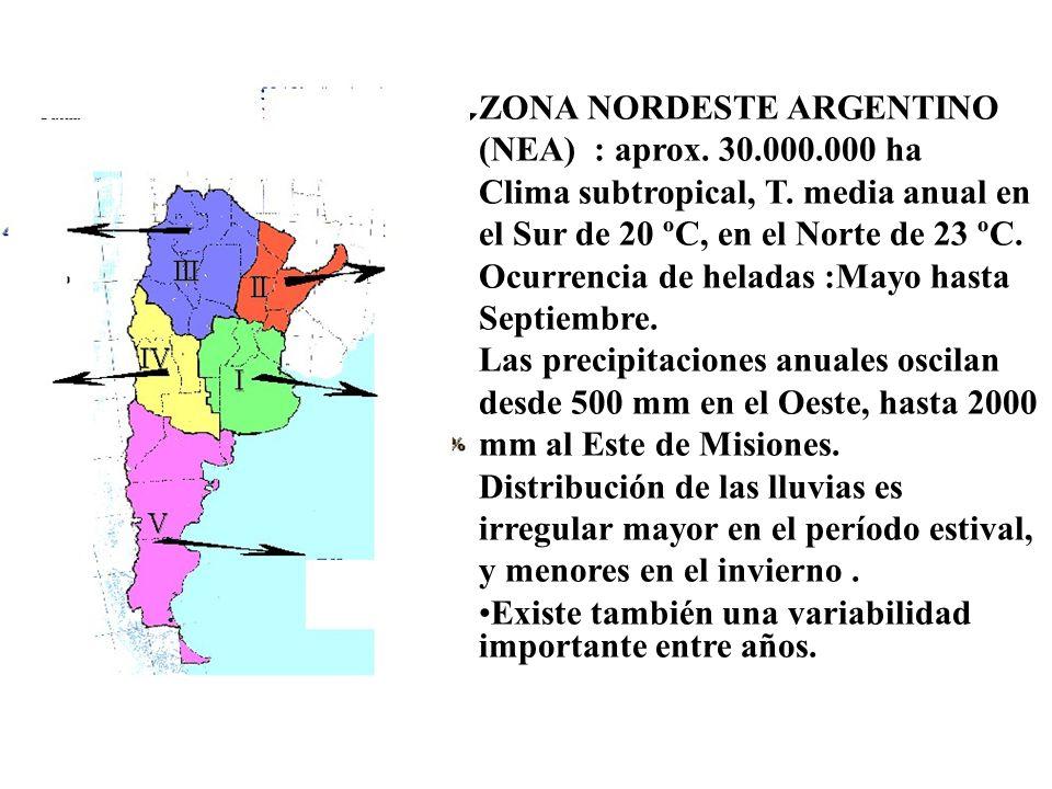 Región del NEA El NEA comprende dos subregiones separadas por el Río Paraná.
