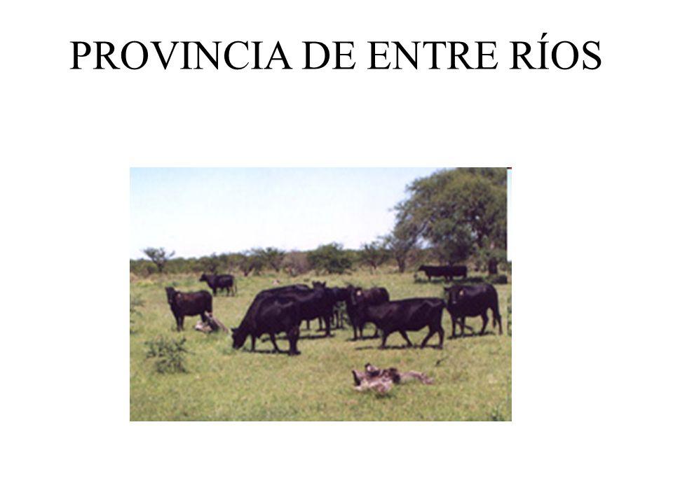 Tasa de crecimiento diario de tres pastizales de Corrientes. Promedio 20 años.