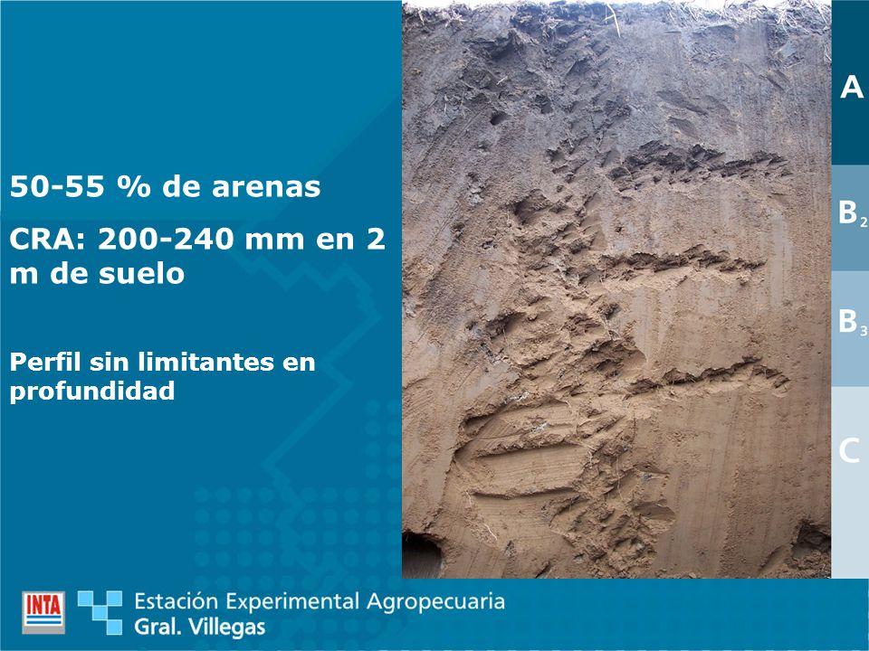 50-55 % de arenas CRA: 200-240 mm en 2 m de suelo Perfil sin limitantes en profundidad