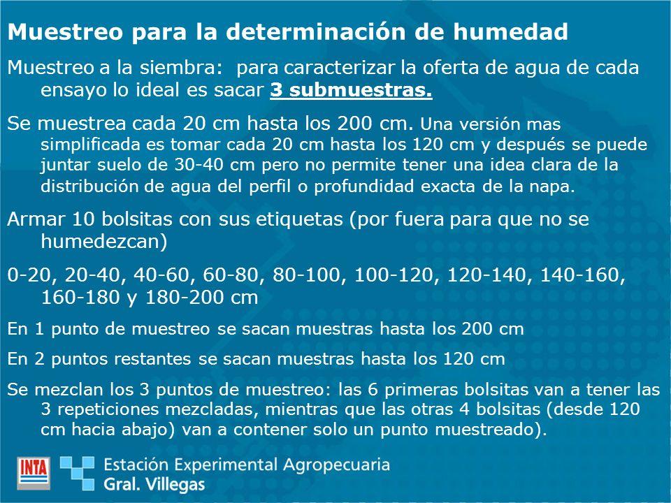 Muestreo para la determinación de humedad Muestreo a la siembra: para caracterizar la oferta de agua de cada ensayo lo ideal es sacar 3 submuestras. S